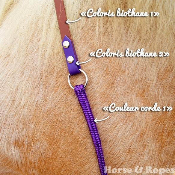 Cordéo Biothane & Corde