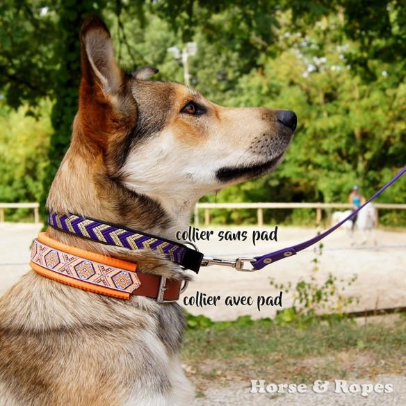 Collier chien Biothane 25mm