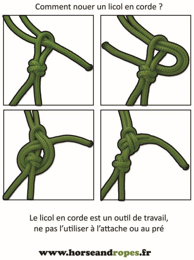 comment nouer un licol en corde