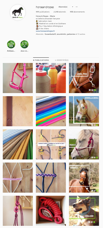 compte instagram horse&ropes