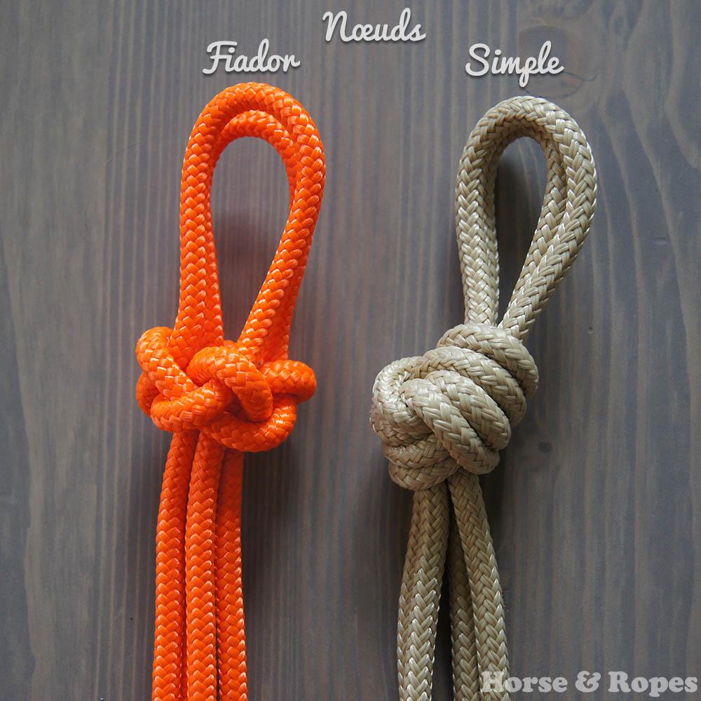 Comparaison du noeud fiador ou diamant et du noeud simple sur les licols éthologiques