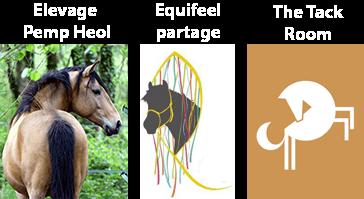 Les partenaires principaux d'Horse&Ropes