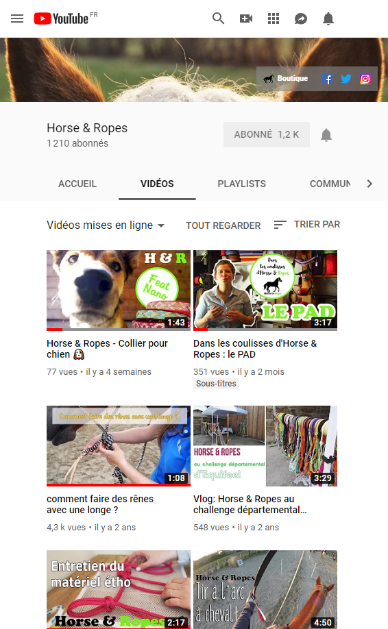 chaine youtube horse&ropes